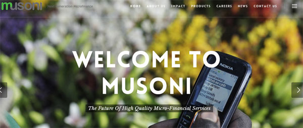 Musoni Microfinance Institution